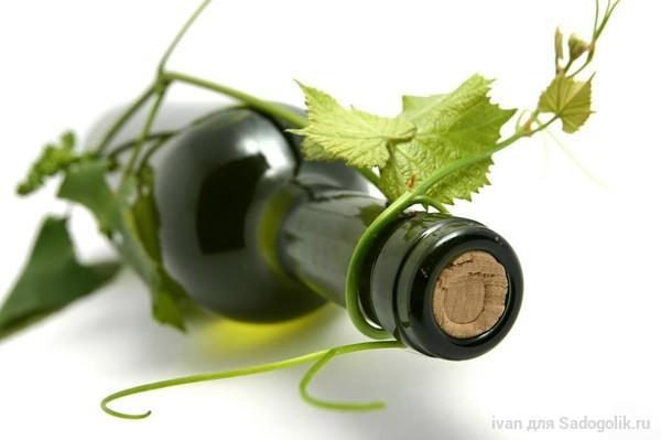 Рецепты изготовления вина в домашних условиях из красной смородины 47