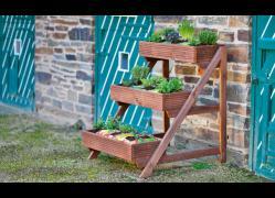 собранная этажерка с растениями