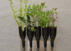 вазы из бутылки